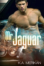 mr jaguar
